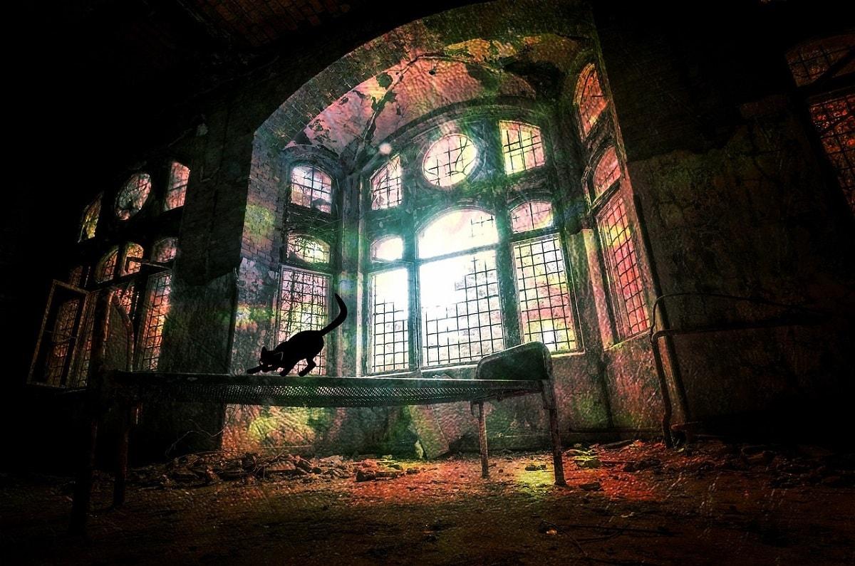 Black Cat Haunted House