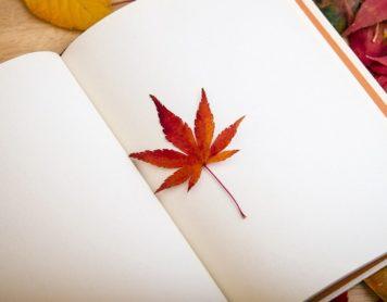 ¿Para qué sirven las páginas en blanco en los libros?